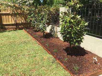 gardenbed hampton