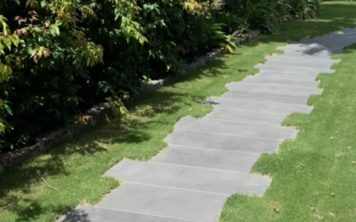 What type of path should I have in my garden?