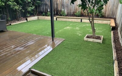 What is the best grass for children in Melbourne?
